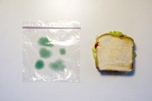 aa52b antifurto2 - Saco de comida anti-furto