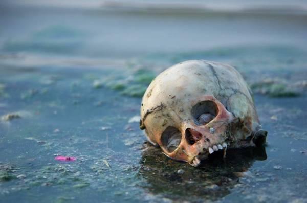 2f7ba cranio - O que a novela Caminho das Índias não mostra. O outro lado da India