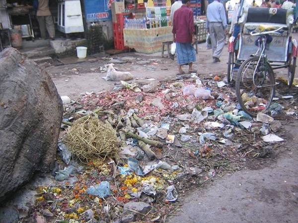 e6e5a lixo - O que a novela Caminho das Índias não mostra. O outro lado da India