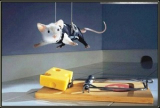 be59e coragem mouse - Coragem é a palavra #4