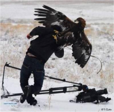 1f86e image003 728080 - Grandes brigas entre homens e animais! Natureza...