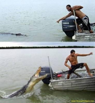d9b58 image005 729397 - Grandes brigas entre homens e animais! Natureza...