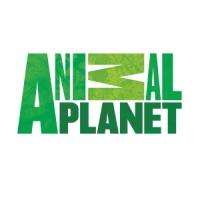 2f964 animal planet logo - Quais os maiores conglomerados de mídia do mundo? (Atualizado 2016)