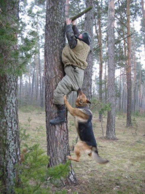4514d image014 737136 - Grandes brigas entre homens e animais! Natureza...Parte #2