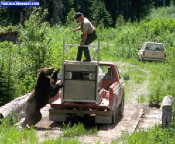 ef122 image008 732061 - Grandes brigas entre homens e animais! Natureza...Parte #2