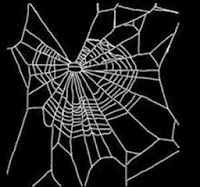 d508d maconha - Aranhas drogadas fazem teias malucas