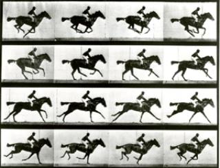36a0f eadweardj muybridge - Google faz homenagem a Eadweard Muybridge