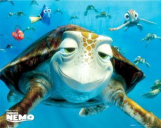 969eb tartaruga do procurando nemo - Você sabe quem é o dublador do Pato Donald no Brasil?