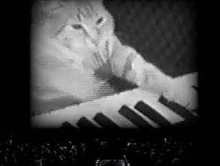 "47db4 keyboardcat - Transforme seus vídeos no estilo do filme ""O Artista"""